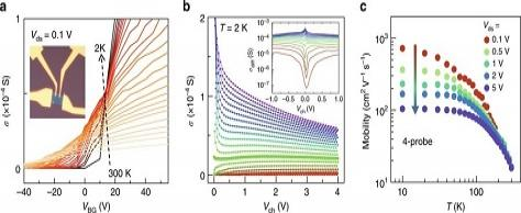 Soft Coulomb gap and asymmetric scaling towards metal-insulator quantum criticality in multilayer MoS2